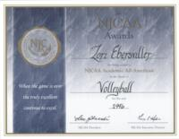 Bethany Lutheran College 1996 certificate for academic All-American volleyball player, Lori Ebersviller