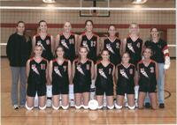 Bethany Lutheran College 2001 portrait of the volleyball team