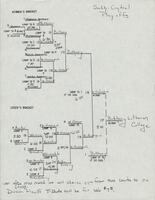 Bethany Lutheran College 1989 south central play-offs tournament bracket