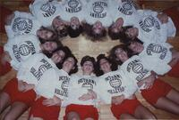 Bethany Lutheran College 1990 photograph 2 of the volleyball team